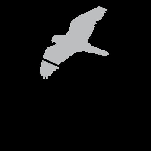 jodo-2014-medalj-jetong